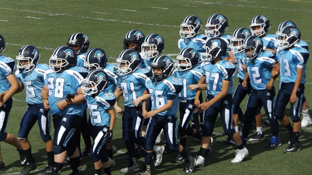 Picture of Scottsdale Argonauts Players after a game